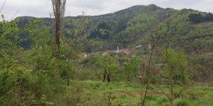 İnebolu Yeşilöz Köyü
