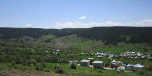 Karakoçan Akçiçek Köyü