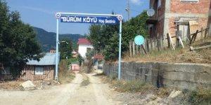 Küre Bürüm Köyü