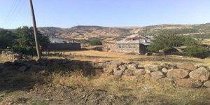 Karakoçan Dumluyazı Köyü