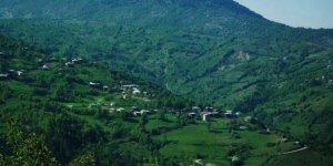 Pınarbaşı Dizdarlı Köyü