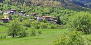 Pınarbaşı Karafasıl Köyü