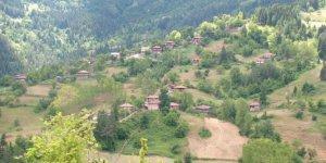 Şenpazar Celallı Köyü