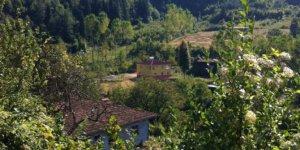 Şenpazar Demirkaya Köyü