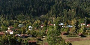 Şenpazar Dereköy Köyü