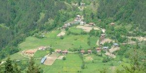 Şenpazar Gürleyik Köyü