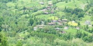 Şenpazar Gürpelit Köyü