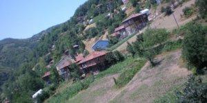 Şenpazar Himmet Köyü