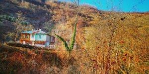 Şenpazar Küçükmutlu Köyü