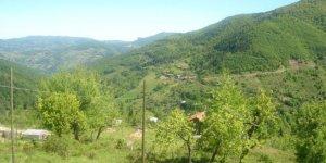 Şenpazar Yarımca Köyü