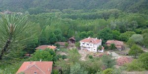 Taşköprü Celep Köyü