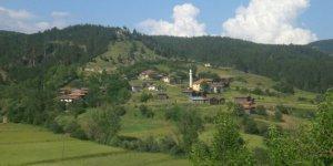Taşköprü Hocaköy Köyü