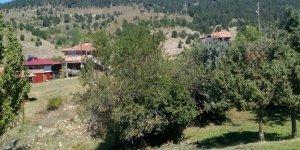 Taşköprü Kayapınar Köyü