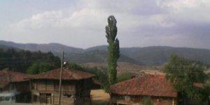 Taşköprü Taşçılar Köyü