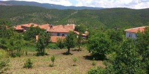 Taşköprü Yeniler Köyü