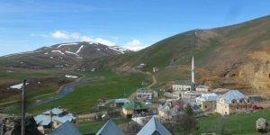 Taşköprü Yukarıçayırlık Köyü