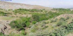 Kovancılar Aşağıköşe Köyü