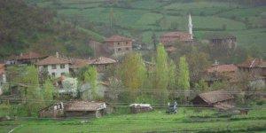Tosya Çepni Köyü