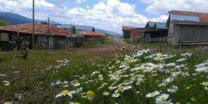 Tosya Gövrecik Köyü
