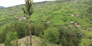 Tosya Keçeli Köyü