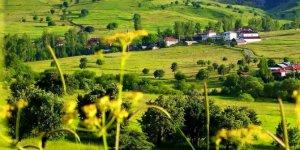 Tosya Mısmılağaç Köyü