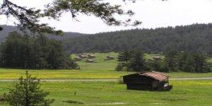 Kastamonu Ahlatçık Köyü