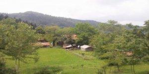 Kastamonu Aksinir Köyü