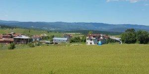 Kastamonu Baltacıkuyucağı Köyü