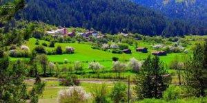 Kastamonu Göcen Köyü