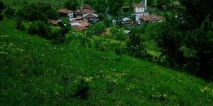 Kastamonu İbrahimli Köyü