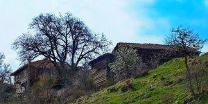 Kastamonu Karaevli Köyü