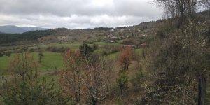 Kastamonu Kayalı Köyü