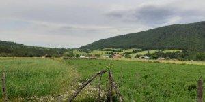 Kastamonu Musallar Köyü
