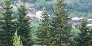 Kastamonu Örencik Köyü