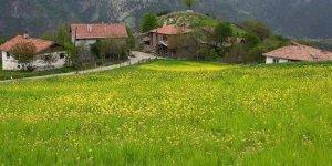 Kastamonu Sahip Köyü