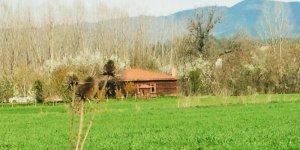 Kastamonu Sırasöğütler Köyü