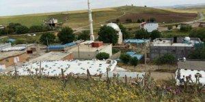 Bismil Yukarıharım Köyü