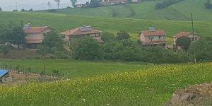 Körfez Kalburcu Köyü