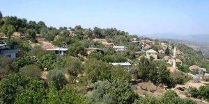 Yenipazar Hacıköseler Köyü