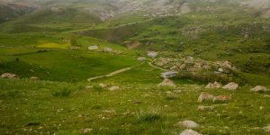Çayırlı Tosunlar Köyü