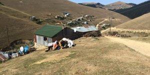 Çayırlı Yaylalar Köyü