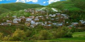 İliç Leventpınarı Köyü