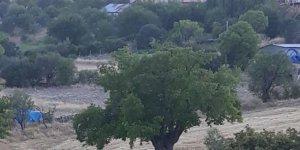 Kemaliye Topkapı Köyü
