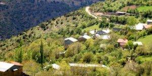 Kemaliye Tuğlu Köyü