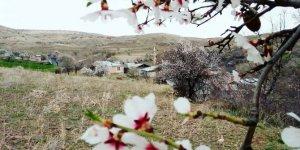 Kemaliye Yazmakaya Köyü
