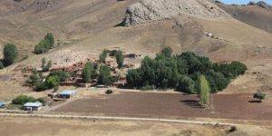 Refahiye Darıtepe Köyü