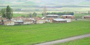 Tercan Edebük Köyü