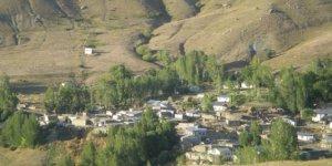 Tercan Güzbulak Köyü