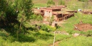 Tercan Karacakışlak Köyü