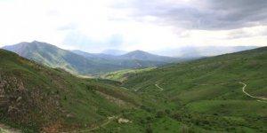 Tercan Kavaklık Köyü